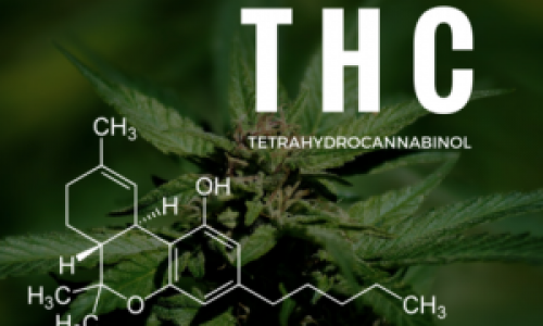 THC Products